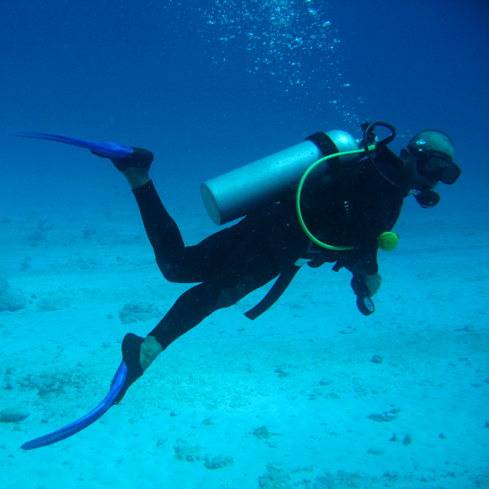 Why scuba diving is the best sport