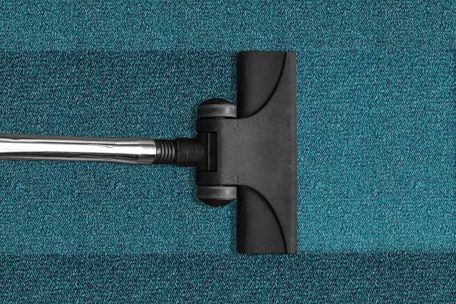 Why You Should Hire a Professional Carpet Cleaner Rather than Cleaning Your Own Carpets.