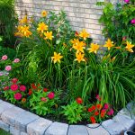 Tips to Create Perfect Flower Beds for Your Landscape