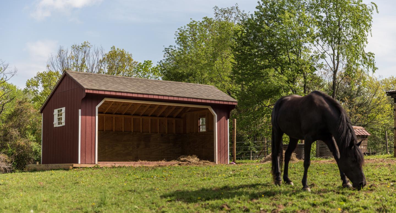 shelter for horse